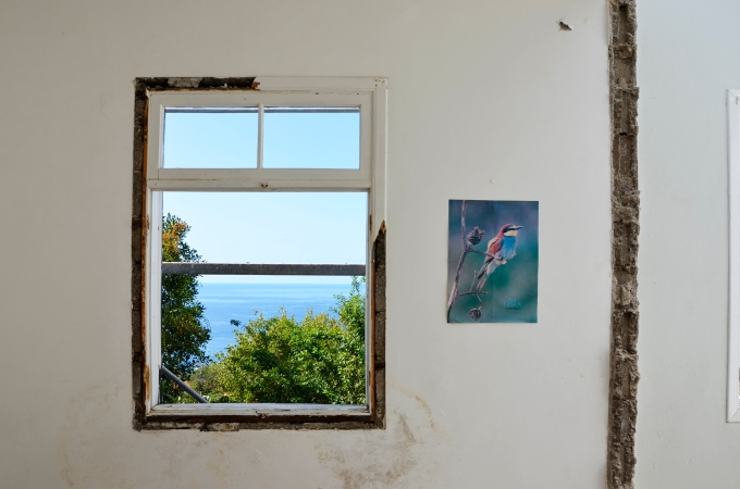 House reabilitation inFunchal
