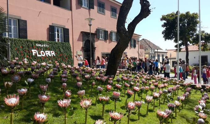 Flower installation inaugurated